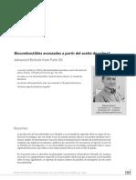 5. Biocombustibles Avanzados a Partir Del Aceite de Palma