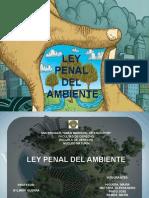 PRESENTACION DE LPA nnnn.pptx
