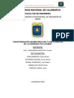 INFORME SALIDA PUYLLACANA  pdf.pdf