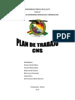 Plan de Trabajo CNS