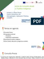 Propuestas de Inclusion-Comunidades Indigenas