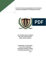 DEGRADACIÓN POR FOTOCATÁLISIS HOMOGÉNEA (FOTO-FENTON) DE EFLUENTES LÍQUIDOS CONTAMINADOS CON RESI.pdf