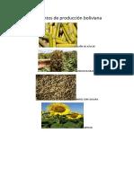 Alimentos de Producción Boliviana