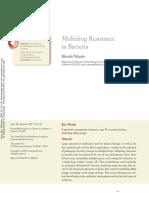 Multidrug Resistance in Bacteria
