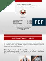 PPT NEW.pptx