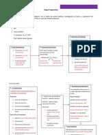 Copia Etapa Preparatoria. Esquema - Copia (2)
