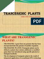 Trancegenic Plants
