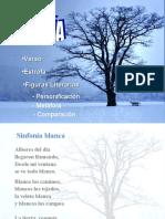 poesiayfigurasliterarias-090609150142-phpapp02