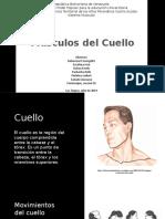 Músculos del cuello expo.pptx