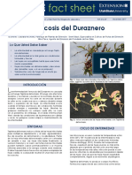 Verrucosis del Duraznero.pdf