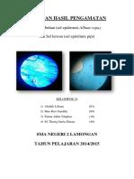 sel_epitelium_pipi_dan_allium_cepa.docx