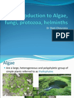 Introduction to Algae, fungi, protozoa, helminths.ppt