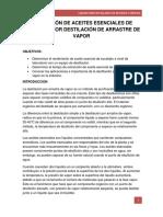 obtención de aceites esenciales de eucalipto