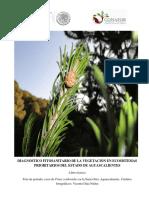 diagnostico_fitosanitario