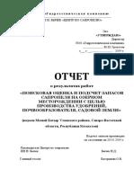 ОБРАЗЕЦ Отчет Геологического Изучения Участка Недр