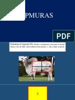 02-EPMURAS-Dr.-Baldomar