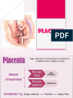 Placenta Expo