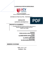 Informe Final de Prc3a1cticas Preprofesionales