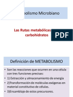 2_Metabolismo_Microbiano