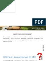Direccion de Empresas Toqueapla