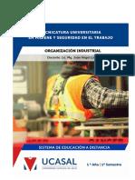 Organizacion industrial 1
