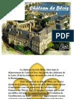 Chateau Blois(1)