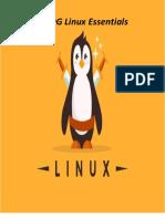 NDG linux essentials.1