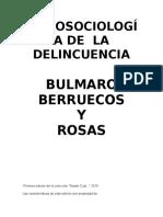 Berruecos Y Rosas Bulmaro - Psicosociologia De La Delincuencia.doc