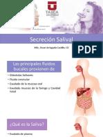 Secreción Salival 2018