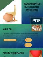 Requerimientos Nutricionales en Pollitos Edwar Tovar