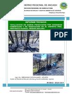 Informe Incendios Forestales y de Vegetación en el distrito  Pira, provincia Huaraz, Ancash, Perú