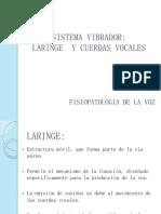3. SISTEMA VIBRADOR.pdf