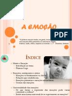 04 - Emoções.pdf