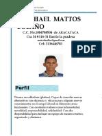 Hoja de Vida Michael Mattos Barranquilla