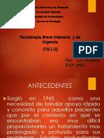 P.B.I.U ACTUALIZADA