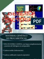 Genetica , crecimiento y metabolismo bacteriano-1