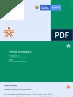 Presentacion Pruebas T y T 2019-PAGASENA [Autoguardado] (1)