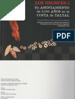 Contreras Et Al 2007 - Los Bronces 1b