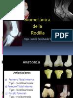 biomecanica de la rodilla