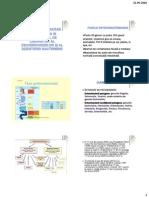 Famila_Enterobacteriaceae