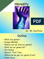 Genes and Heredity