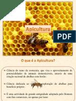 apicultura_-_nooes_gerais.pdf