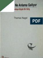 Thomas Nagel - Hersey Ne Anlama Geliyor, Felsefeye Giris