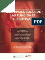 neuropsicologia de las funciones ejecutivas