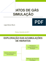Hidratos de Gás - Simulação