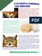 Vangelo in immagini sedicesima per annum, anno C.pdf