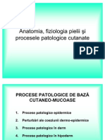 01 Anatomie Fiziologie Imagini Fara Imagini