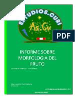 Informe Sobre Morfologia Del Fruto
