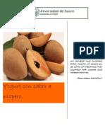 Trabajo de Gestion de Productos Yogurt Nispero (1)