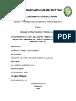 Informe-ppp- Ushñahua Chavez Fernando